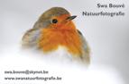 Swa Bouvé - Natuurfotografie - www.swanatuurfotografie.be